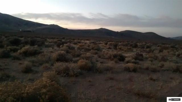 Mineral Flat Road, Reno, NV 89506 (MLS #170015798) :: RE/MAX Realty Affiliates