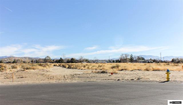 2559 Last Chance Ct., Minden, NV 89423 (MLS #170016092) :: Chase International Real Estate