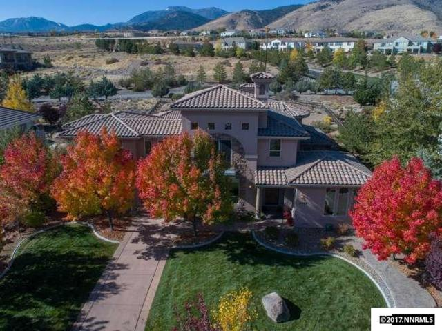 1017 Desert Jewel Ct, Reno, NV 89511 (MLS #170016319) :: Mike and Alena Smith | RE/MAX Realty Affiliates Reno