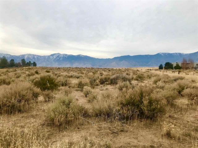 2042 East Valley Rd, Minden, NV 89423 (MLS #180000029) :: RE/MAX Realty Affiliates