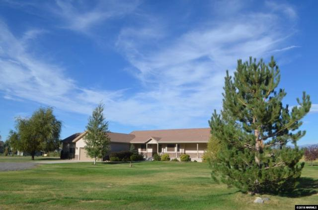 1007 Irma Lane, Gardnerville, NV 89460 (MLS #180000401) :: RE/MAX Realty Affiliates