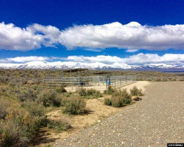 Little Owyhee Rd, Paradise Valley, NV 89426 (MLS #180000524) :: RE/MAX Realty Affiliates
