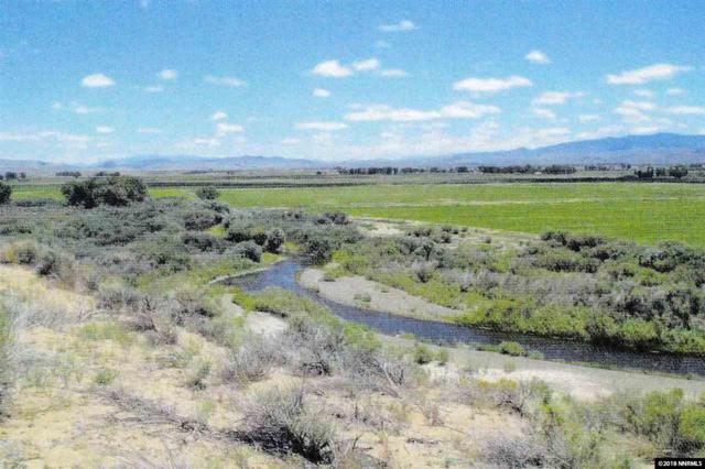 222 Artist View, Wellington, NV 89444 (MLS #180000723) :: Marshall Realty