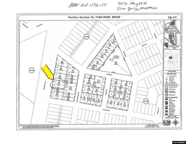 2470 S Hwy 95A, Silver Springs, NV 89429 (MLS #180000738) :: Angelica Reyes Team