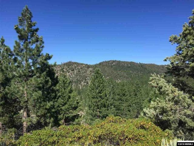 Hwy 89 83.75 Acres, Markleeville, Ca, CA 96120 (MLS #180001575) :: Chase International Real Estate