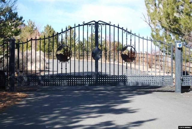 0 Anitra Drive, Reno, NV 89511 (MLS #180001869) :: RE/MAX Realty Affiliates