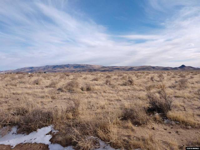 1230 E Cougar Street, Silver Springs, NV 89429 (MLS #180002233) :: RE/MAX Realty Affiliates