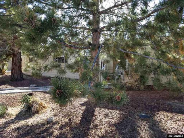 2454 Fairmont Way, Carson City, NV 89706 (MLS #180002366) :: Harcourts NV1