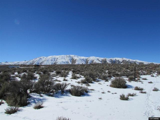 1205 Mineral Flat Road, Reno, NV 89506 (MLS #180002789) :: The Matt Carter Group | RE/MAX Realty Affiliates