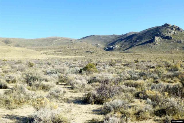 250 Cinch Road, Reno, NV 89508 (MLS #180002901) :: NVGemme Real Estate