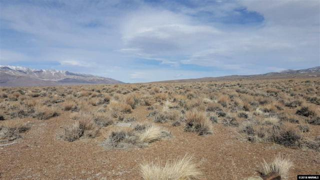 00 Eastside Lane, Topaz, NV 89444 (MLS #180003083) :: NVGemme Real Estate