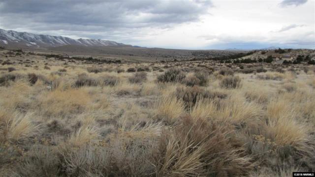 1270 Deerlodge Road, Reno, NV 89508 (MLS #180003215) :: NVGemme Real Estate