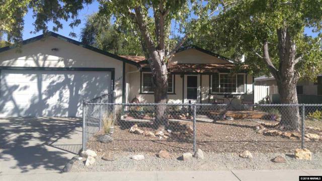 2387 Lewis Drive, Carson City, NV 89701 (MLS #180003285) :: NVGemme Real Estate