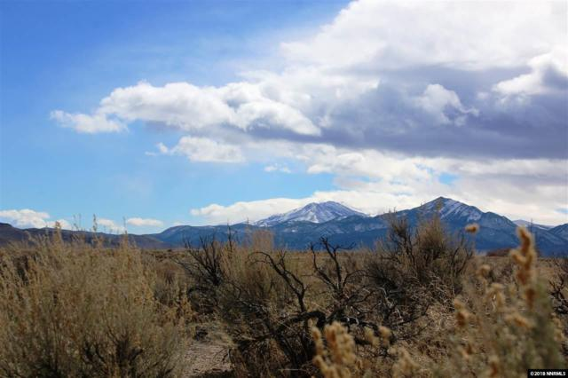 238 Chaparral Dr, Smith, NV 89430 (MLS #180003343) :: Harcourts NV1