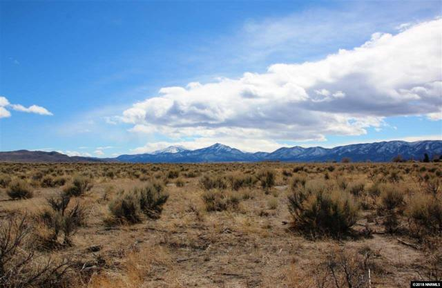244 Chaparral Dr, Smith, NV 89430 (MLS #180003351) :: Harcourts NV1