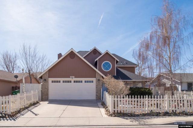 663 Lucas Drive, Carson City, NV 89701 (MLS #180004060) :: NVGemme Real Estate