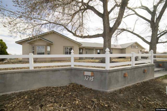 3295 Silver State Ave, Fallon, NV 89406 (MLS #180004324) :: Mike and Alena Smith | RE/MAX Realty Affiliates Reno
