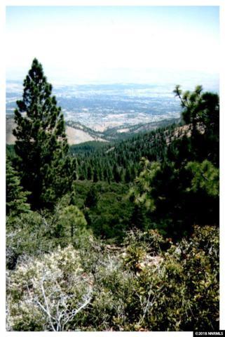 0 Hunter Lake Road, Reno, NV 89519 (MLS #180004631) :: Mike and Alena Smith | RE/MAX Realty Affiliates Reno