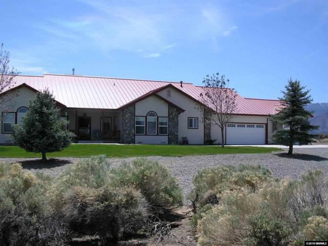 205 Jessen Road, Wellington, NV 89444 (MLS #180004648) :: NVGemme Real Estate