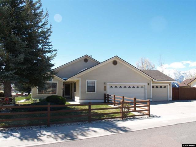 853 Longleaf Place, Minden, NV 89423 (MLS #180004956) :: The Matt Carter Group | RE/MAX Realty Affiliates