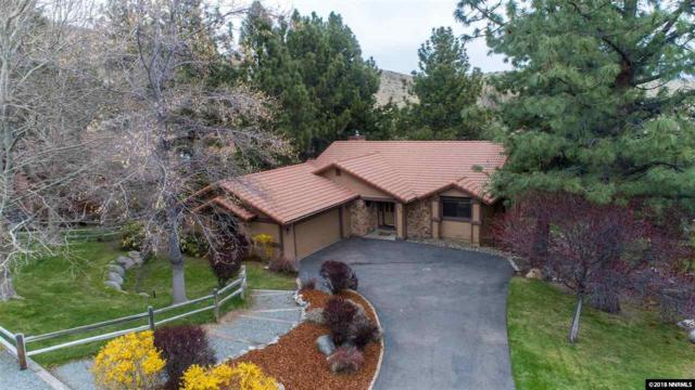 123 Lotus Circle, Carson City, NV 89703 (MLS #180005167) :: NVGemme Real Estate