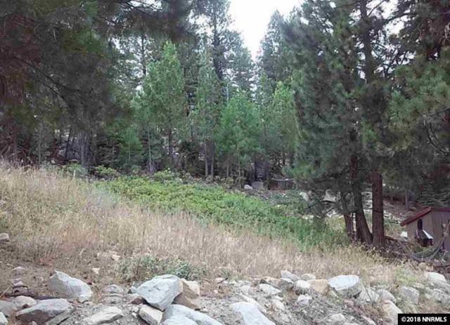 20700 Old Mount Rose, Reno, NV 89511 (MLS #180005212) :: Joseph Wieczorek | Dickson Realty