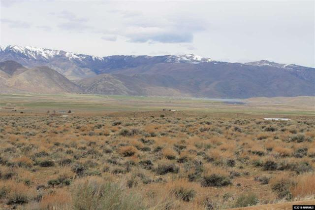 0923-19-000-012, Topaz, NV 89410 (MLS #180005302) :: NVGemme Real Estate