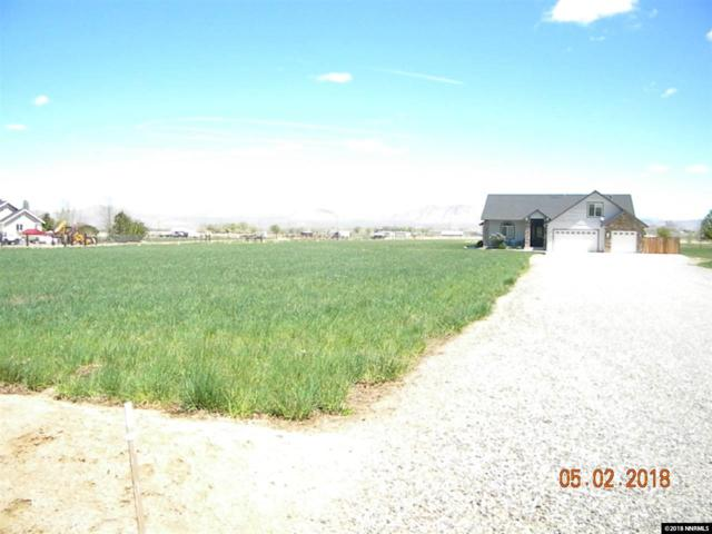 544 Upper Colony, Wellington, NV 89444 (MLS #180005721) :: RE/MAX Realty Affiliates