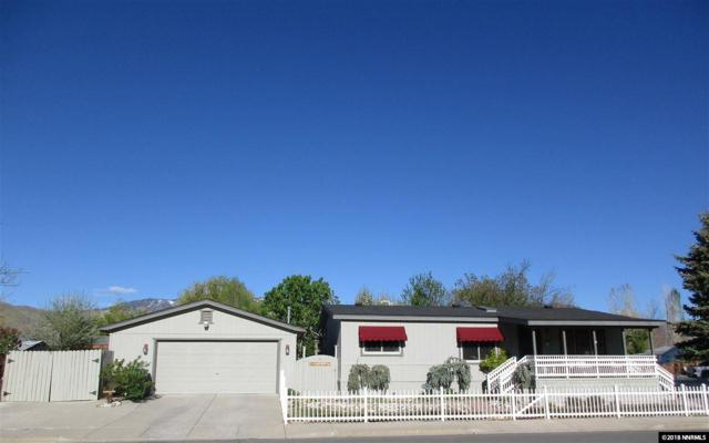 1195 Christina Circle, Carson City, NV 89701 (MLS #180005725) :: Marshall Realty
