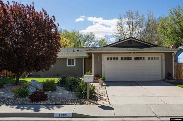 2955 Santa Ana Drive, Reno, NV 89502 (MLS #180005925) :: Joshua Fink Group