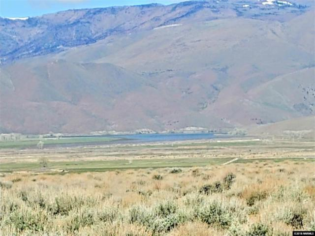 2594 East Side Lane, Topaz, NV 89410 (MLS #180006509) :: Harcourts NV1