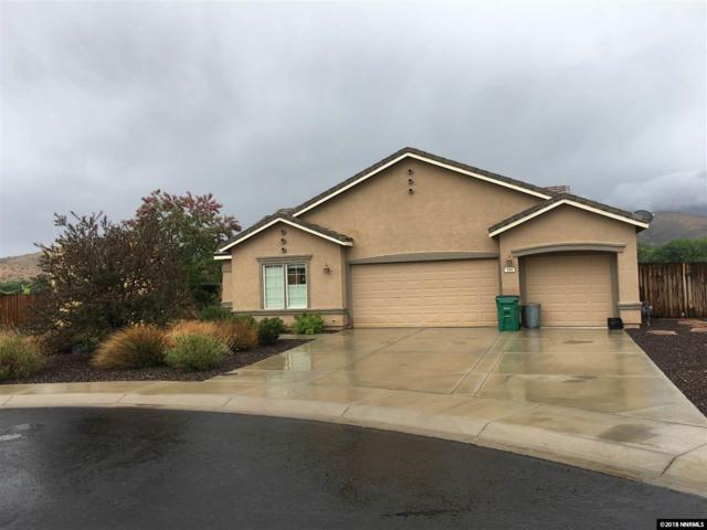 111 June Grass Cts, Dayton, NV 89403 (MLS #180006681) :: Harpole Homes Nevada