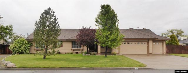 255 Bridle Path Terrace, Sparks, NV 89441 (MLS #180006771) :: Marshall Realty