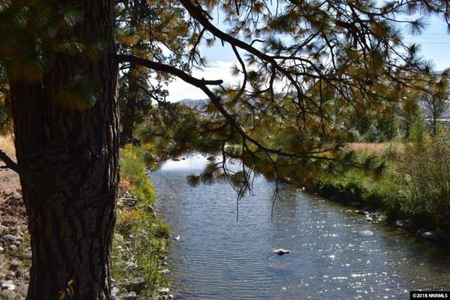 365 River Pines Drive/Lot 12, Verdi, NV 89439 (MLS #180006802) :: NVGemme Real Estate