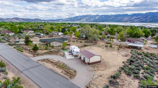 1695 S Irving Pl, Washoe Valley, NV 89704 (MLS #180006893) :: Harpole Homes Nevada