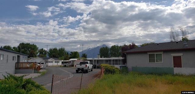 1246 Kingslane, Gardnerville, NV 89410 (MLS #180006959) :: NVGemme Real Estate