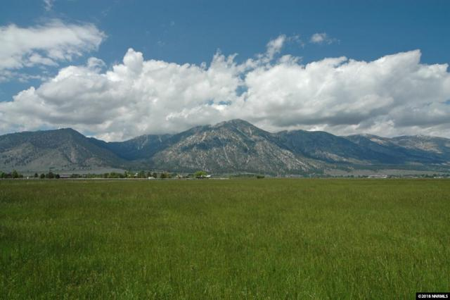 538 Hwy 88, Gardnerville, NV 89460 (MLS #180007140) :: RE/MAX Realty Affiliates
