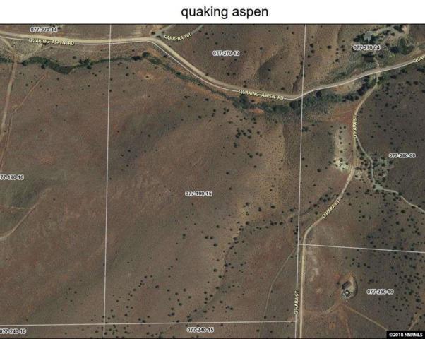 0 Quaking Aspen Rd., Reno, NV 89510 (MLS #180007334) :: The Mike Wood Team