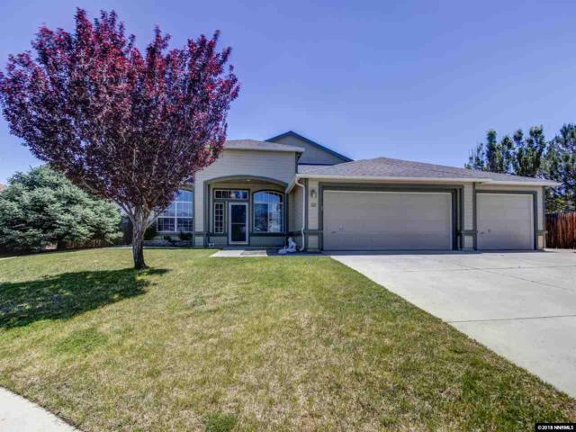 221 Bobcat Dr, Dayton, NV 89403 (MLS #180007362) :: Harpole Homes Nevada