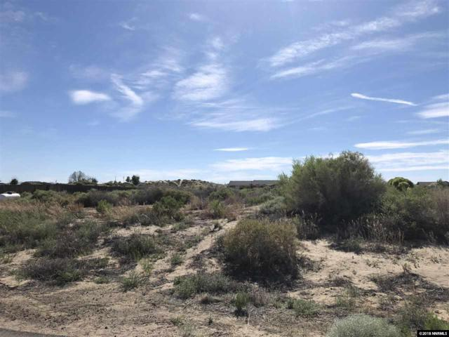 1110 Jungle Dr, Fallon, NV 89406 (MLS #180007800) :: Harcourts NV1