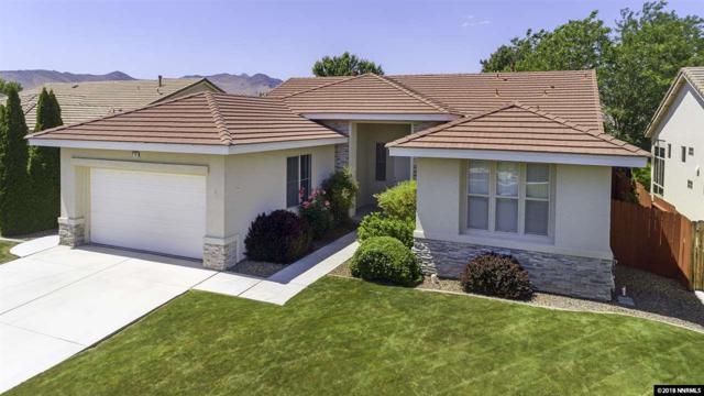 220 La Costa Ave, Dayton, NV 89403 (MLS #180007988) :: Harpole Homes Nevada