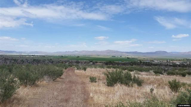 APN 010-191-08, Wellington, NV 89444 (MLS #180008272) :: Harpole Homes Nevada