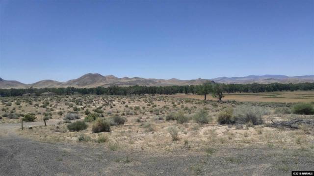 9850 Via Segundo, Silver Springs, NV 89429 (MLS #180008378) :: Harpole Homes Nevada