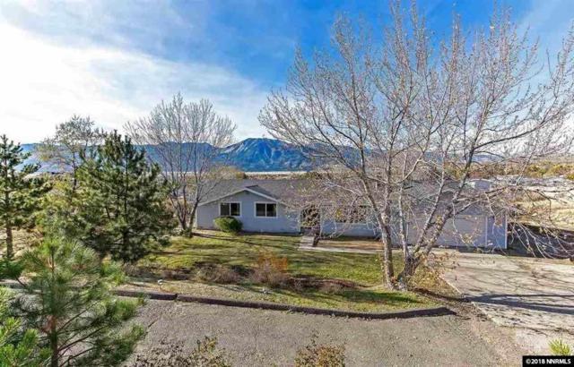 220 Drake Way, Washoe Valley, NV 89704 (MLS #180008601) :: Joseph Wieczorek | Dickson Realty
