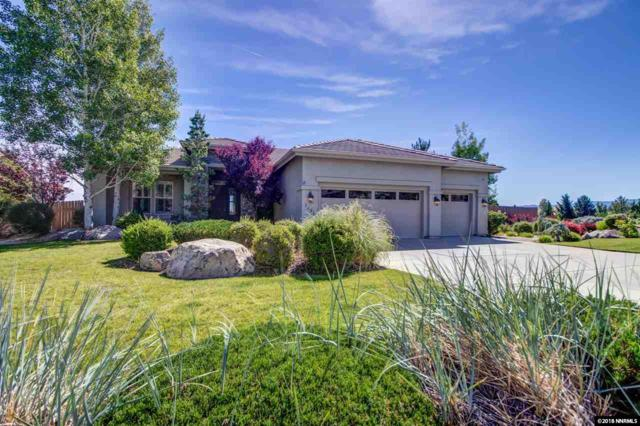 3491 Painted Vista Dr, Reno, NV 89511 (MLS #180008792) :: The Mike Wood Team