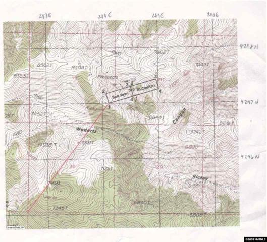0 Ricky Canyon Access Road, Topaz, NV 89444 (MLS #180008910) :: Harcourts NV1