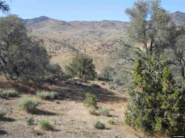 0000 6 Mile Canyon, Virginia City, NV 89403 (MLS #180009290) :: Chase International Real Estate