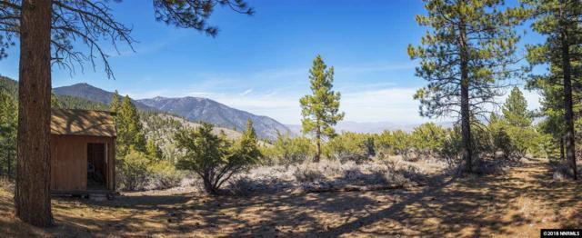 0 Kingsbury Grade, Stateline, NV 89449 (MLS #180009432) :: Harpole Homes Nevada