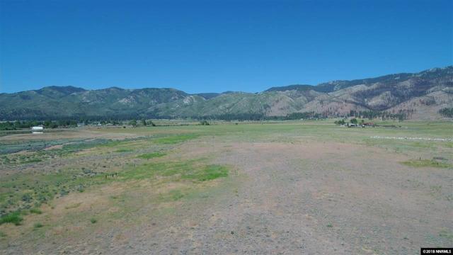 18445 Lake Vista Rd, Washoe Valley, NV 89704 (MLS #180009464) :: The Matt Carter Group | RE/MAX Realty Affiliates