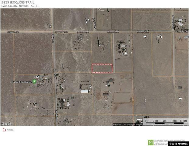 9825 Iroquois, Stagecoach, NV 89429 (MLS #180009560) :: NVGemme Real Estate